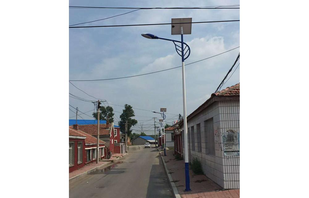 新农村道路太阳能路灯工程